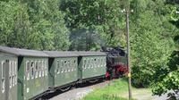 © Edith Spitzer, Wien / Zittauer Schmalspurbahn, Sachsen / Zum Vergrößern auf das Bild klicken