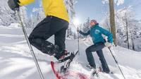 © OÖ Tourismus / David Lugmayr / Mühlviertel, OÖ - Schneeschuhwandern / Zum Vergrößern auf das Bild klicken