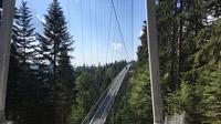 © Edith Spitzer, Wien / Sommerberg, Bad Wildbad - Hängebrücke_WildLine / Zum Vergrößern auf das Bild klicken