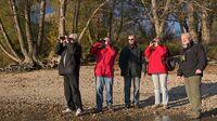 © Kovacs / Nationalpark Donau-Auen - Spätherbstliche Wanderung / Zum Vergrößern auf das Bild klicken