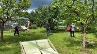 © Edith Spitzer, Wien / Kremstal-Donau, NÖ - Stift Göttweig_Marillen-Garten / Zum Vergrößern auf das Bild klicken