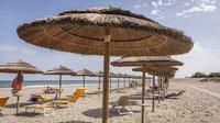 © Archivio Po Delta Tourism bis / Comacchio, Italien - Strandvergnügen / Zum Vergrößern auf das Bild klicken