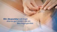 © www.tv-wartezimmer.de / Akupunktur Zahnarzt / Zum Vergrößern auf das Bild klicken