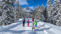 © Gloria Ramirez / Trentino, Italien - Val di Fassa / Zum Vergrößern auf das Bild klicken