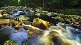 © CzechTourism / Böhmerwald / Böhmerwald, CZ - Fluss / Zum Vergrößern auf das Bild klicken