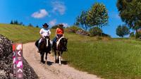 © Oberösterreich Tourismus / Erber / Pferdereich, Mühlviertel - Wanderreitweg / Zum Vergrößern auf das Bild klicken