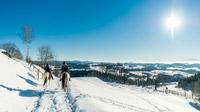 © Oberösterreich Tourismus / David Lugmayr / Mühlviertel, Ö - Winterreiten / Zum Vergrößern auf das Bild klicken