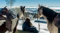 © Oberösterreich Tourismus / David Lugmayr / Mühlviertel, OÖ - Winterreiten / Zum Vergrößern auf das Bild klicken