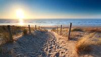 © shutterstock_180884936 / Zandvoort, NL / Zum Vergrößern auf das Bild klicken
