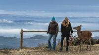 © Catalan Tourist Board / Pyrenäen, Katalonien - Wandern / Zum Vergrößern auf das Bild klicken