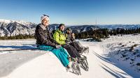 © Arthur Michalek / Raxalpe, NÖ - Schneeschuherlebnis / Zum Vergrößern auf das Bild klicken