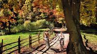 © Trentino Marketin / Daniele Lira / Val di Cembra, Trentino - Radfahren / Zum Vergrößern auf das Bild klicken