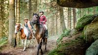 © Pferdereich Mühlviertler Alm / Mühlviertler Alm, OÖ - Reiten im Mühlviertel