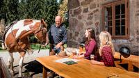 © Pferdereich Mühlviertler Alm / Mühlviertler Alm, OÖ - Rast beim Reiten / Zum Vergrößern auf das Bild klicken
