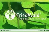 FriedWald-Video