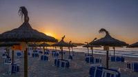 © shutterstock_1118882900 / Sa Coma, Mallorca / Zum Vergrößern auf das Bild klicken