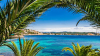 © shutterstock_583349944 / Paguera, Mallorca / Zum Vergrößern auf das Bild klicken