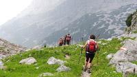© Petra Astner / Stoabergmarsch, Tirol-Salzburg / Zum Vergrößern auf das Bild klicken