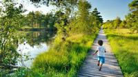© TMN / Francesco Carovillano / Lüneburger Heide, DE - Pietzmoor / Zum Vergrößern auf das Bild klicken