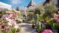 Algund, Südtirol - Gartenmarkt