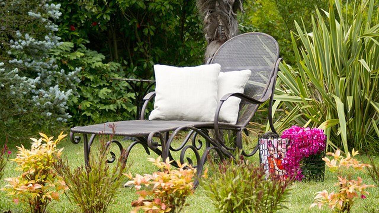 Engin Akyurt (CC0-Lizenz)   pixabay.com   Wilder Garten   244407483d